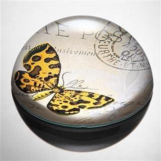 Anecdotal Aardvark Orange & Braun Art Glas Schmetterling Briefbeschwerer