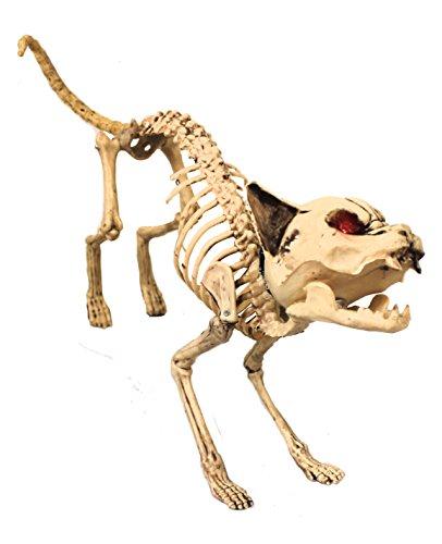 lfd187bewegliche Katze Skelett Halloween Prop mit Licht bis Augen und Sound (One Size) (Halloween Skelett Prop)