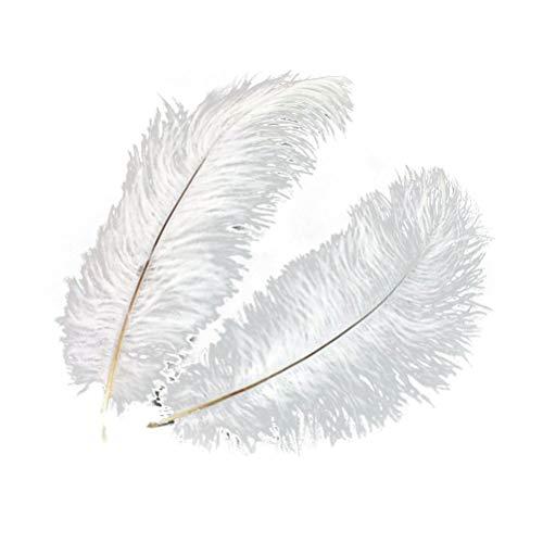 KAIMENG 5 stücke künstliche straußenfedern für DIY Handwerk Kleid nähen Urlaub Party Dekoration 30-35 cm (weiß)