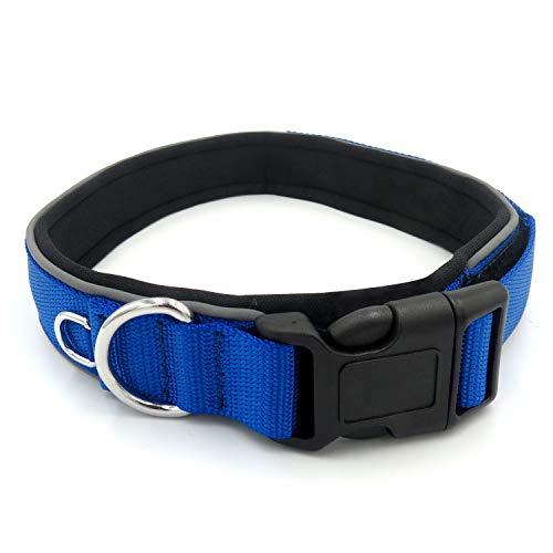 AIYUE Haustier Halsband Hundehalsband reflektierende Nylon Haustier Kragen (Halsbänder Halloween Reflektierende)