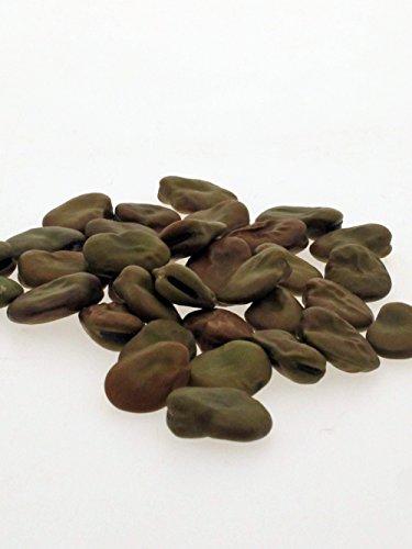 Puffbohne, Dicke Bohne 'Hangdown Grünkernig' (Vicia faba) 35 Samen Saubohne Favabohne Ackerbohne