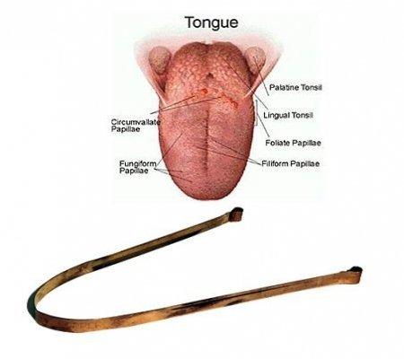 Zungenschaber Mundgeruch (Zungenreiniger aus Kupfer Ayurveda Zungenschaber Mundhygiene Anti- Mundgeruch (1))