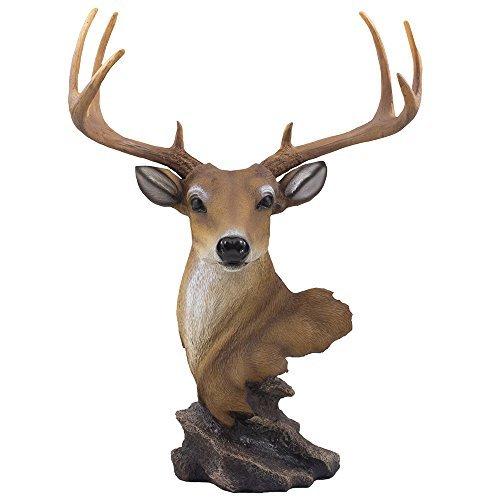 Home-n-Gifts Deko-Geweih Buck Büste Statue oder Rehe Kopf Skulptur mit Laufmatte für rustikale Lodge oder Jagd Kabine Decor Wildlife Art Display Mittelpunkt als Geschenke für Jäger & Dollar, Fans -
