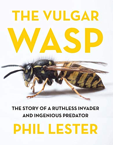 The Vulgar Wasp -
