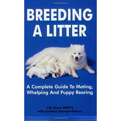 Breeding a Litter: A Complete Guide to Mating Whelping & Puppy (Puppy Litter)