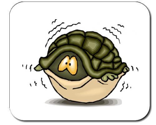 mauspad-mit-der-grafik-shell-schildkrote-angst-feige-furcht-verstecken-angstlich-versteck-tier-feigl