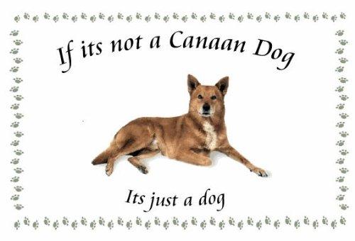 Canaan Dog – Novelty Dog keyrings – If its not