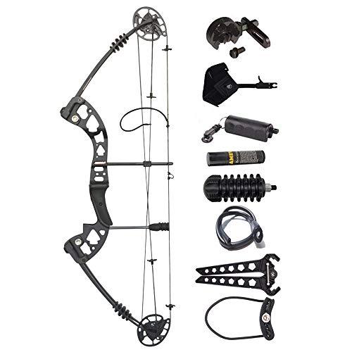 ZSHJG Compound Bogen Set Bogenset für Bogenschießen Sportbogen Verstellbarer Jagd Compoundbogenset 30-55 lbs 310fps Jagdausrüstung mit Komplettes Zubehör Kit (Type 2)