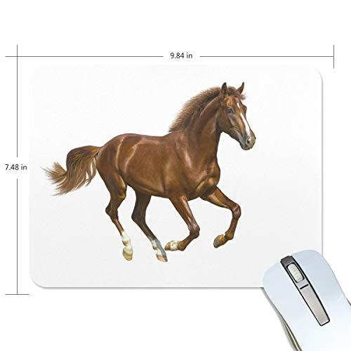 Basics Gaming Mauspad Braunes Pferd weißer Hintergrund Mauspad Gaming Mauspad Computer Tastatur Mauspad 23,84 x 19,84 x 0,2 in