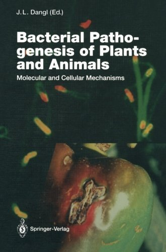 Bacterial Pathogenesis of Plants and Animals: Molecular and Cellular Mechanisms (Current Topics in Microbiology and Immunology) (1994-01-01) par unknown