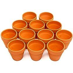 12 Pots de Fleurs en Terre Cuite, 8cm - Petits Pots à Plantes pour Cactus Plantes Grasses Succulent - Parfait pour des Arts et des Artisanats, des Faveurs de Mariage, un Décor.