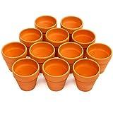 12 Vasi da Fiori di Terracotta Ceramica, 8cm - Mini Cactus Piante Grasse Succulento Miniatura Vasi...