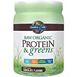 Garden of Life Raw Protein & Greens Bio Pflanzenprotein (Chocolate) 458 g