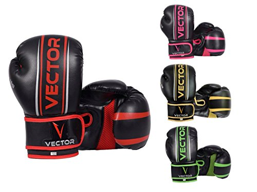 guanti boxe 12 oz Vector Sports
