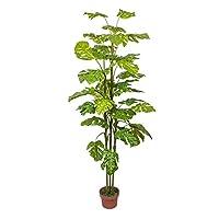Euro Flora Yapay Phılo Demeti 150 Cm