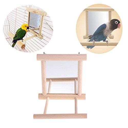wiffe Haustier Vogel mit Holz-Spielzeug mit Sitzstange für Papagei Budgies Parakeet Cockatiel conure Finch Lovebird
