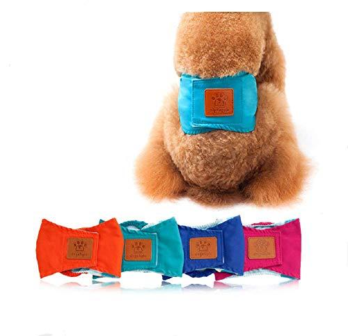 Bingpong Windelhöschen für Hunde, atmungsaktiv, für Männer, Welpen, Physiologisch