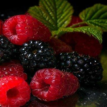 Generic Générique Noir Mulberry Graines Morus Nigra Arbre Jardin Bush Graines DIY Maison Jardin Bonsaï - Rouge-100 pcs