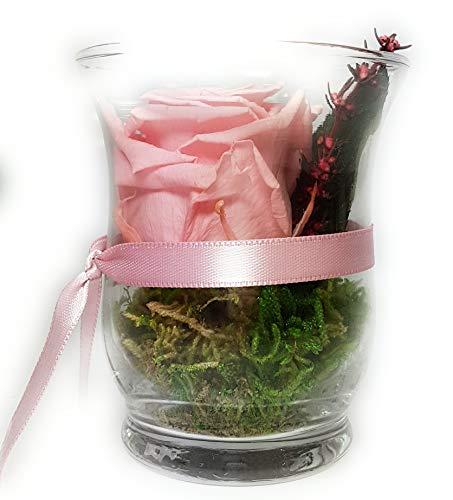 Rosen-Te-Amo Infinity Blume Blumen Gesteck - Haltbare Rosen-Box - Konserviertes Blumenarrangements (Hurricane Vase, Pink - Standard) Infinity Blume