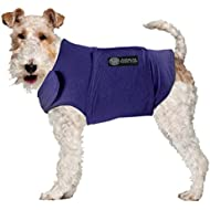 American Kennel Club Calm Anti-Anxiety and Stress Relief Coat for Dogs, X-Large, Blue
