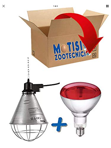 Riflettore portalampada per riscaldamento pulcini, suini + lampada infrarossi 150 WATT