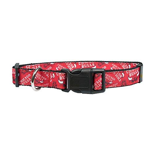 Littlearth NBA Chicago Bulls Team Hundehalsband mit Schleife, Größe L