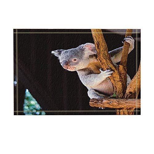 JoneAJ Natur-Wilde Tiere Dekor australische Baby-Koala-Bären auf hölzernen in schwarzen Badteppichen Rutschfeste Fußmatte Bodeneingänge Innenvorderseite Matte Kinder Badematte 15.7x23.6 Zoll - Schwarzer Bär 6 Licht