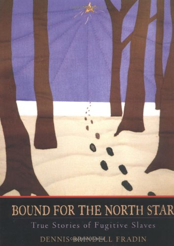Bound for the North Star : true stories of fugitive slaves