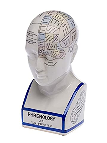 Phrenology head with bust - brain acc. to Fowler -