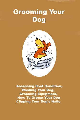 Grooming Your Dog: Assessing Condition, Washing Your