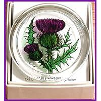 Design Cardo Highland Terrier Fermacarte di vetro in scatola–dipinta a mano prodotto nel Regno Unito