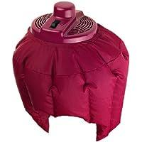 Efbe-Schott, Casco secador de pelo, 180 W/320 W, Burdeos, SC LT 52