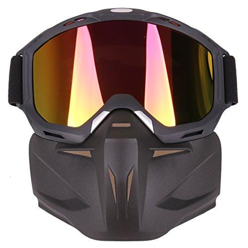 LoKauf Cara Mascara Proteccion Mascara Goggles Mask