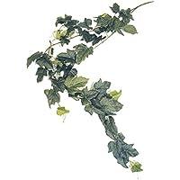 Namiba Terra 5918 Hängepflanze, Großblättrige Efeuranke, Seid, Circa 110 cm