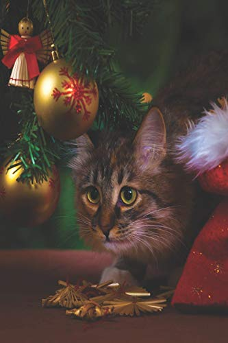 Notes: Lined Notebook | 120 Pages (6 x 9 inches) | Ruled Writing Journal With A Cat Standing By A Christmas Tree With Ball Ornaments And An Angel Cover (Vogel-ornamente Weihnachten)