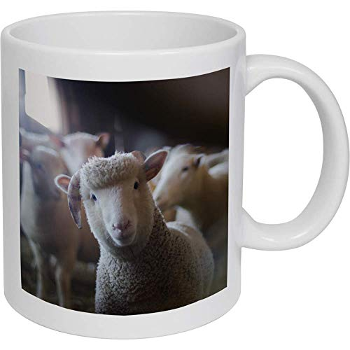 Azeeda 320ml 'Nettes Schaf' Kaffeetasse / Becher (MG00000671)