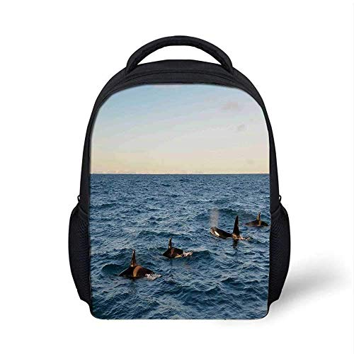 Kids School Backpack Whale Decor Stylish,A Real Photo Image of Four Killer Whales Coming Out of The Sea Artwork for School Travel,9.4