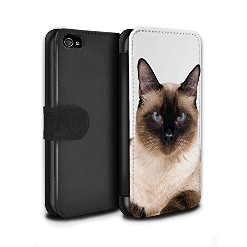 Stuff4 Coque/Etui/Housse Cuir PU Case/Cover pour Apple iPhone 5/5S / Siamois Design / Espèces de chats Collection Siamois