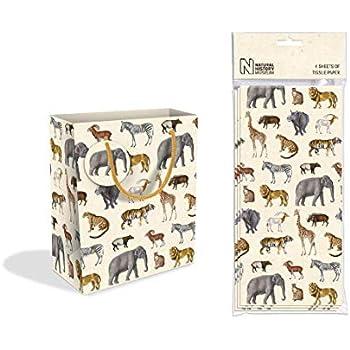 Paddington Bear Design Medium Luxury Gift Bag with Gift Tag Museum /& Galleries