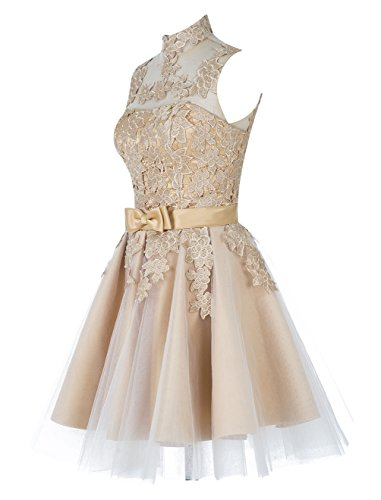 Find Dress Femme Elégant Robe de Soirée/Cocktail/Cérémonie Mariage sans Manches Courte en Tulle avec broderie Champagne01