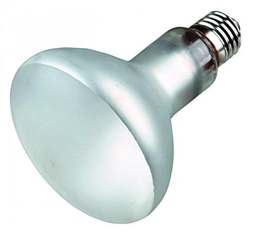 uv lampe für menschen