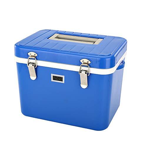 POIUYT Kleine Mini 8 Liter Kühler Box Portable12V Auto Warme Kühlbox Camping Strand Mittagessen Picknick Isolierte Lebensmittel Frisch Sicher Verschlossene Kühler,Blue+6icepacks-8L