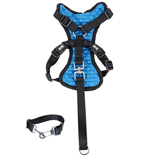 MagiDeal Verstellbarer Haustier Hund Auto Sicherheitsgeschirr + Sicherheitsgurt Gurt - Schwarz + blau, S