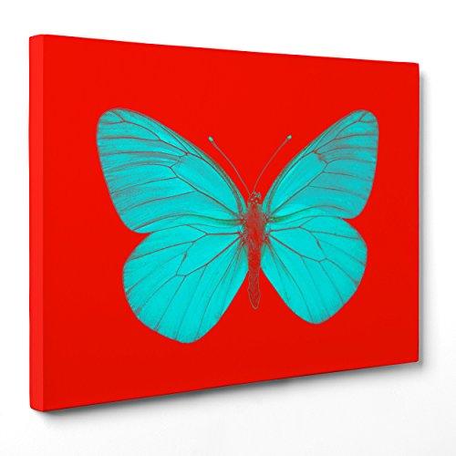 Bild auf Leinwand Canvas-Gerahmt-fertig zum Aufhängen-Damien Hirst-Schmetterling-bicromia-Abstrakte Kunst Dimensione: 70x100cm A - Senza Cornice