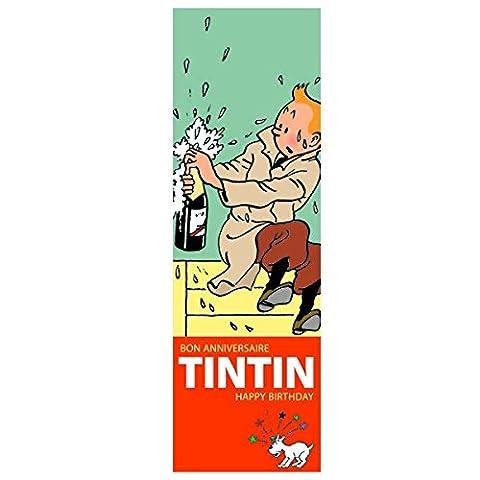 TIM und STRUPPI - Geburtstagskalender Kalender tintin calendar