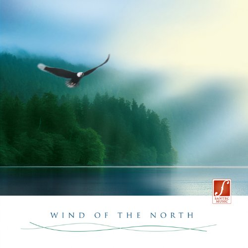 Wind of the North: Irish Celtic Music (Stimulating, for a Positive, Optimistic Mood)