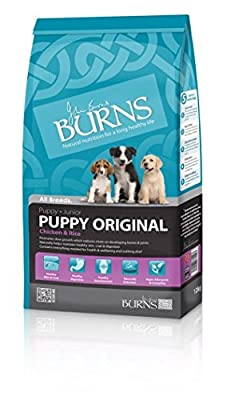 Burns Original puppy dog food chicken and rice all sizes