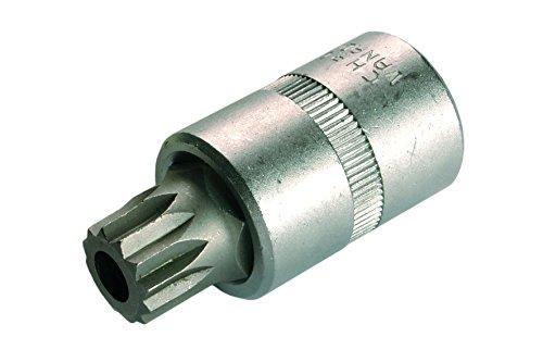 bgs-bit-einsatz-1-2-zoll-innenvielzahn-mit-bohrung-m16-x-58-mm-1-stuck-4356