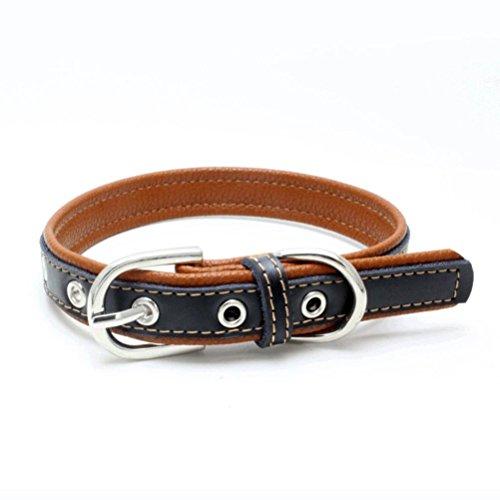 Hmeng Hundehalsband, Haustier Exquisite Verstellbare Hunde Katze Kragen Kontrastfarbe PU Leder Schnalle Halsband Welpen Hund Welpen Haustier Klassische Halsbänder (XS, Braun) -