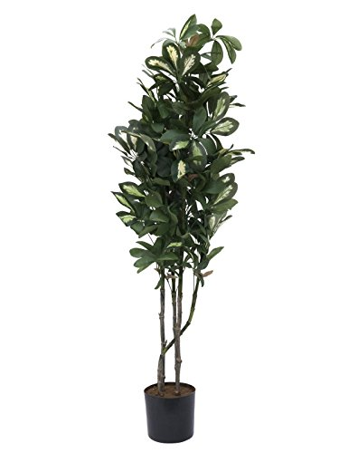 artplants Künstliche Schefflera, getopft, 1060 Blätter, 150 cm – Künstliche Zimmerpflanze/Deko Pflanze